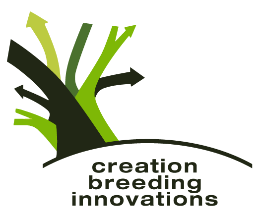 Creation Breeding Innovations